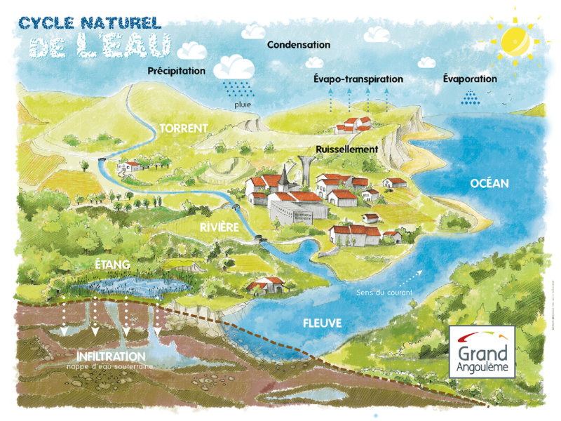 Cycle naturel de l'eau